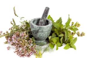 Las 4 mejores hierbas para la menopausia